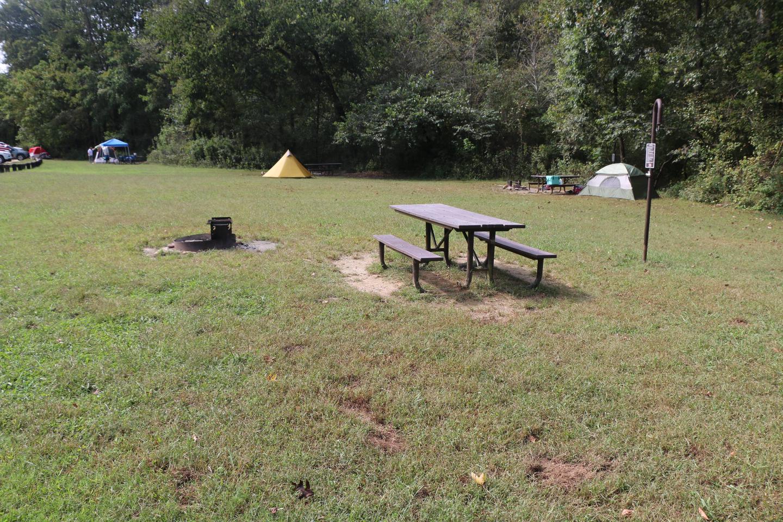 Steel Creek Camp Site #20 (photo 6)Steel Creek Camp Site #20