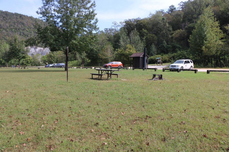 Steel Creek Camp Site #20 (photo 7)Steel Creek Camp Site #20