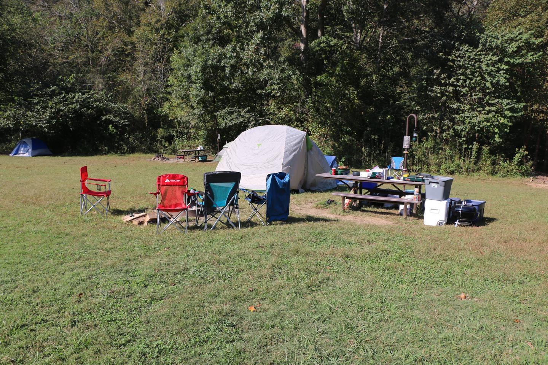Steel Creek Camp Site #20 (photo 8)Steel Creek Camp Site #20
