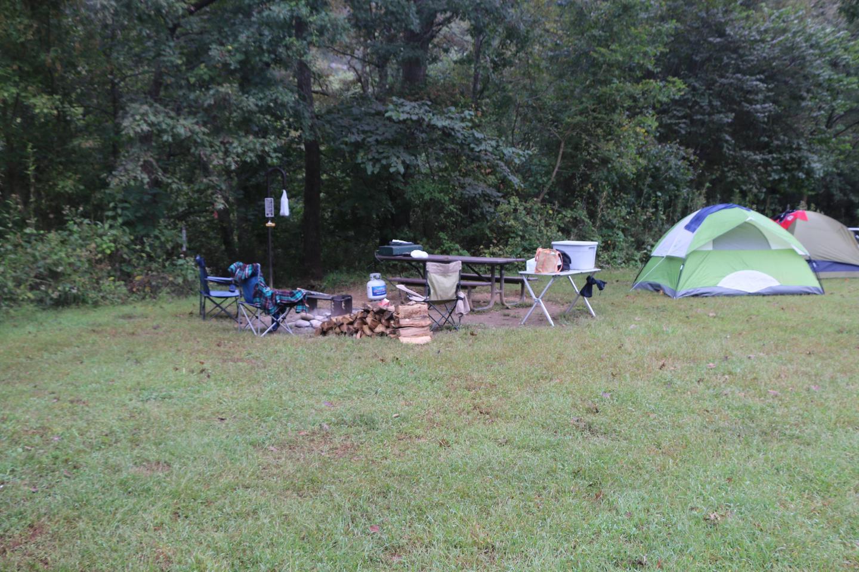 Steel Creek Camp Site #21 (photo 6)Steel Creek Camp Site #21
