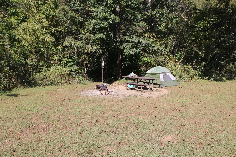 Steel Creek Camp Site #21 (photo 3)Steel Creek Camp Site #21