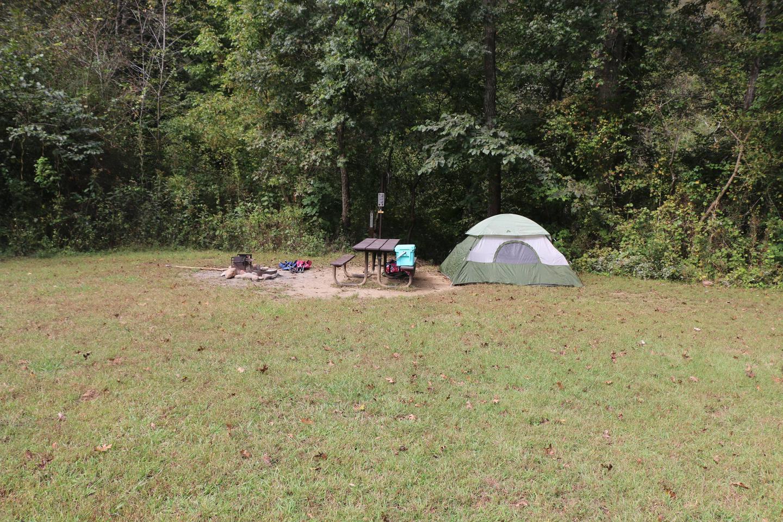 Steel Creek Camp Site #21 (photo 4)Steel Creek Camp Site #21