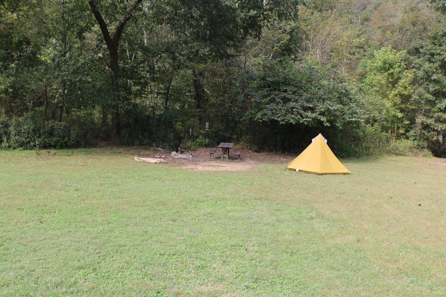 Steel Creek Camp Site #22 (photo 4)Steel Creek Camp Site #22