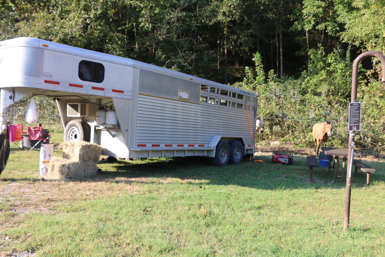 SC Horse Camp #35-4site #35