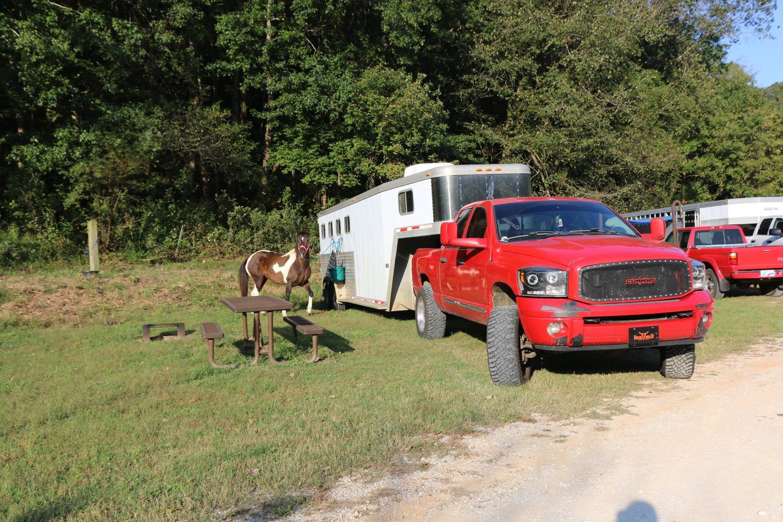 Steel Creek Horse Camp #38-2Site 38