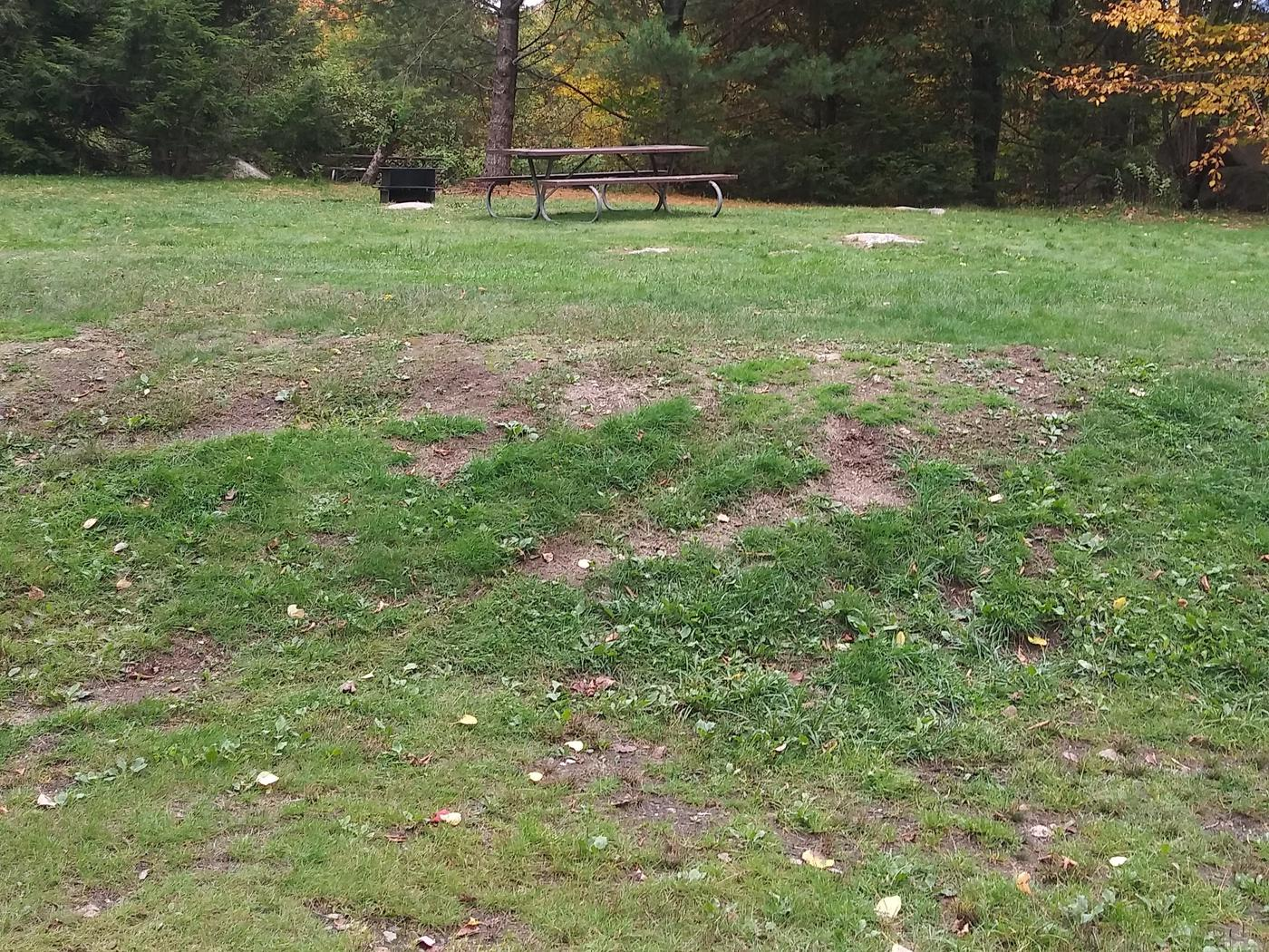 A large walk in tent site. 25 ft. Depth