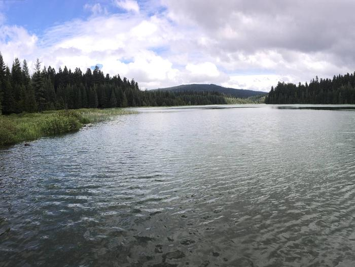 Preview photo of North Arm (Timothy Lake) Campground