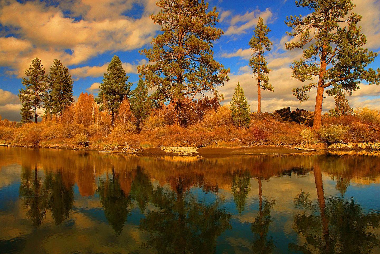 Deschutes National Forest River