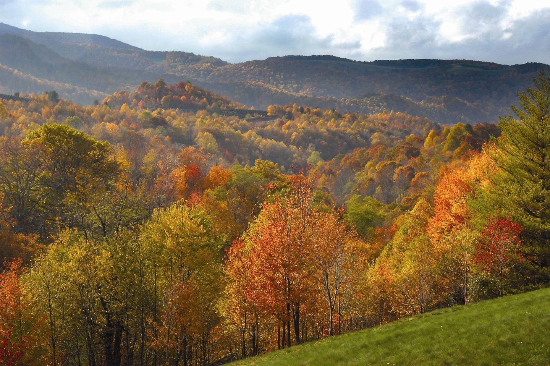 George Washington-Jefferson National Forest Fall