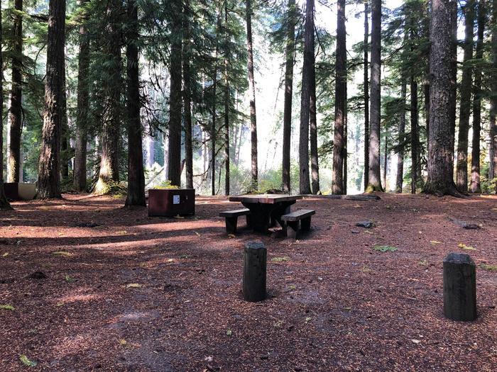 Ohanapecosh Campground - Site A008