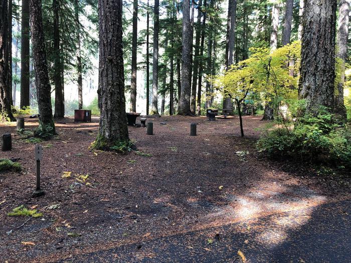 Ohanapecosh Campground - Site A008 Parking Area