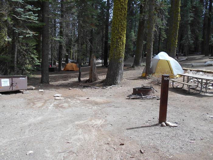 Site 104 Crane Flat