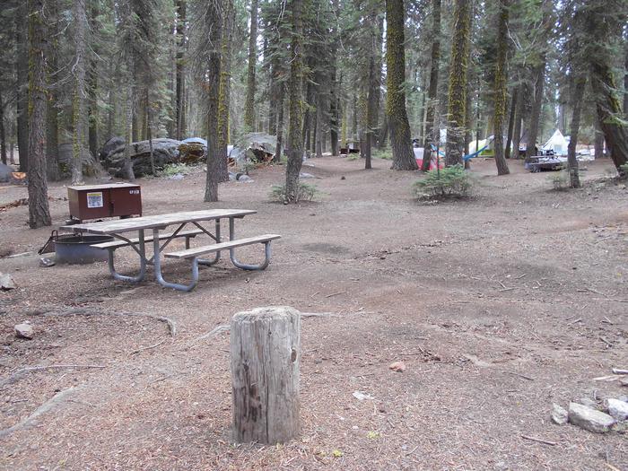 Site 113 Crane Flat