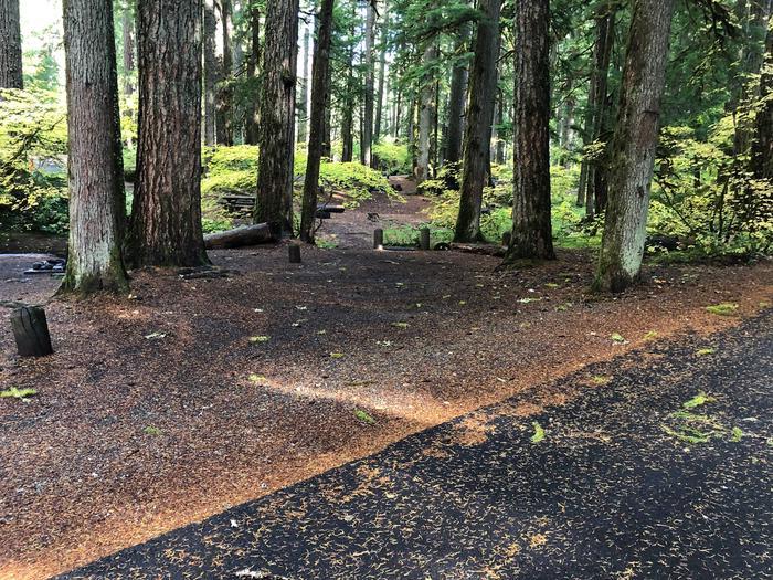 Ohanapecosh Campground - Site A001 Parking Area