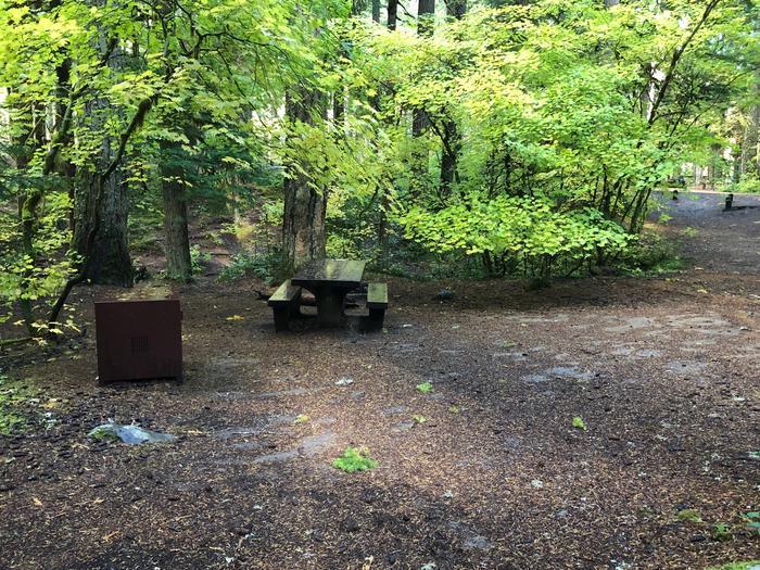 Ohanapecosh Campground - Site A002