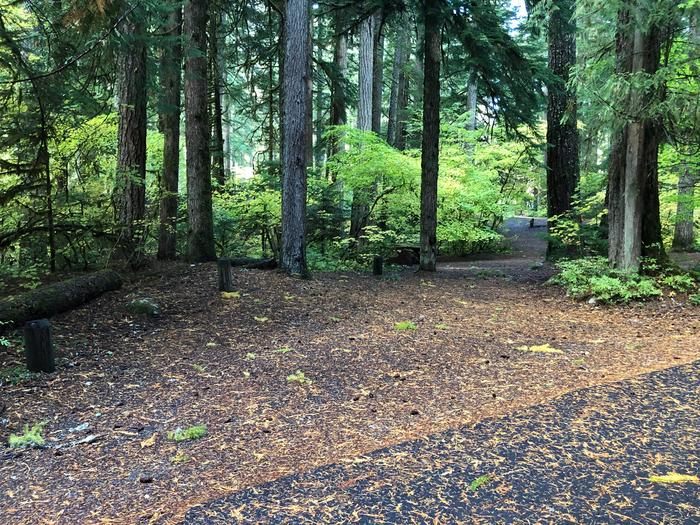 Ohanapecosh Campground - Site A002 Parking Area