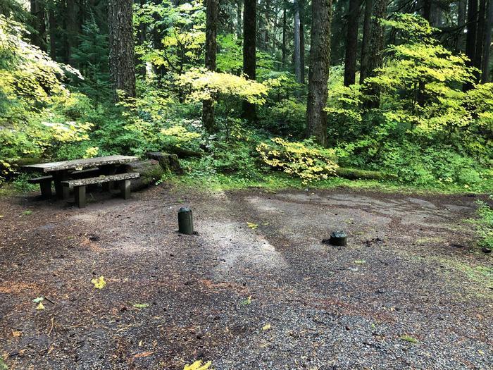 Ohanapecosh Campground - Site A003