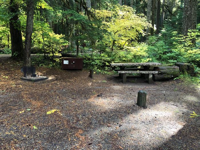 Campers are provided with a picnic table, food storage box, and fire pit.