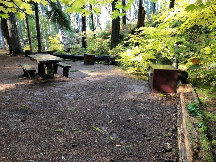 Ohanapecosh Campground - Site A004