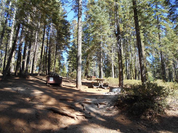 Site 542