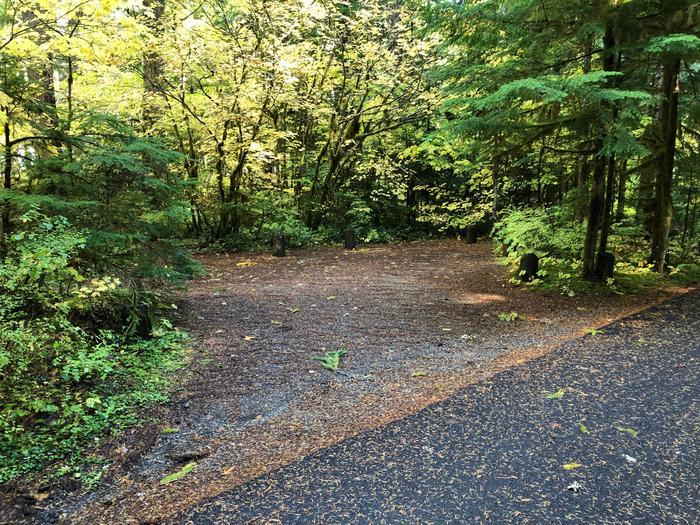 Ohanapecosh Campground - Site A004 Parking Area