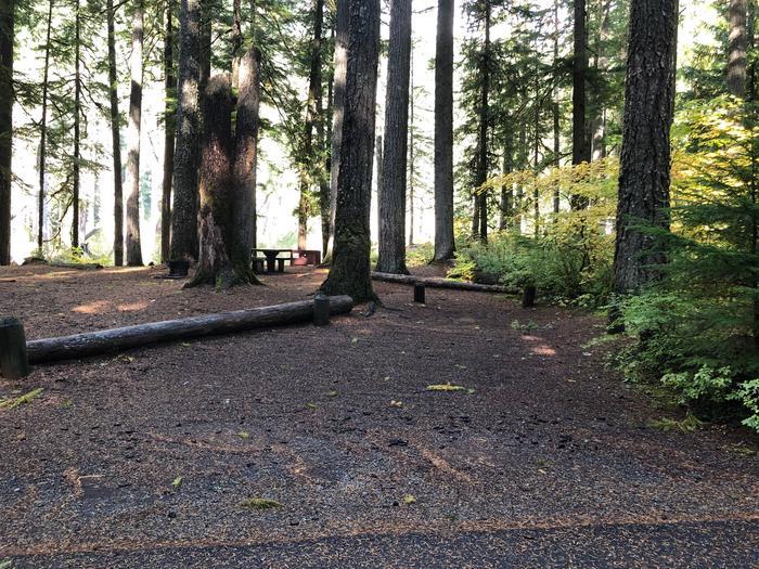 Ohanapecosh Campground - Site A005 Parking Area