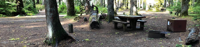 Ohanapecosh Campground - Site A015
