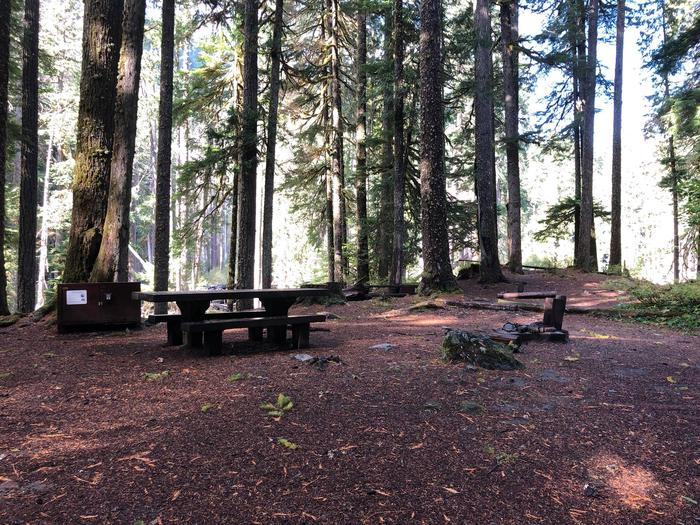 Ohanapecosh Campground - Site A016