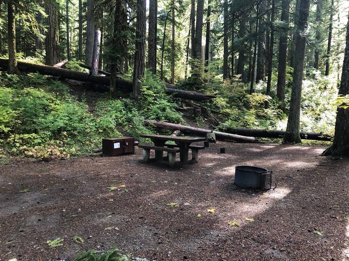 Ohanapecosh Campground - Site A017