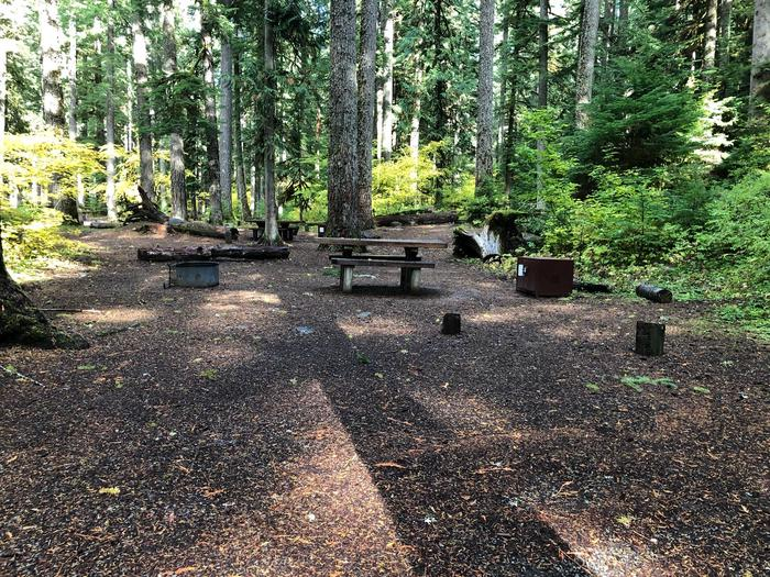 Campers are provided with a picnic table, food storage box, and a fire pit.