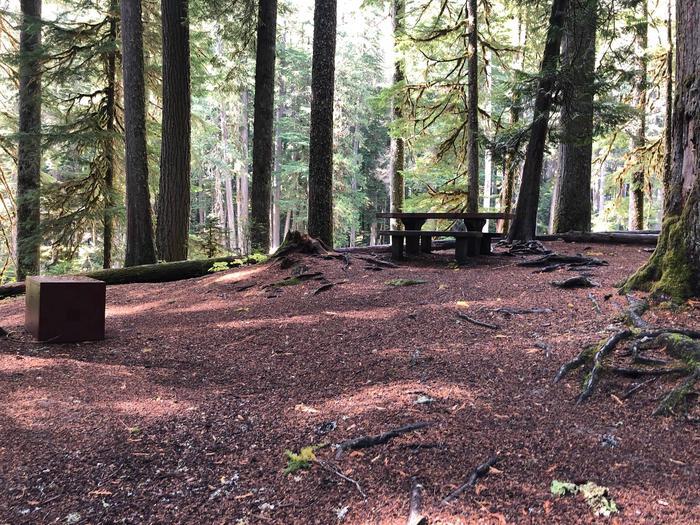 Ohanapecosh Campground - Site A019