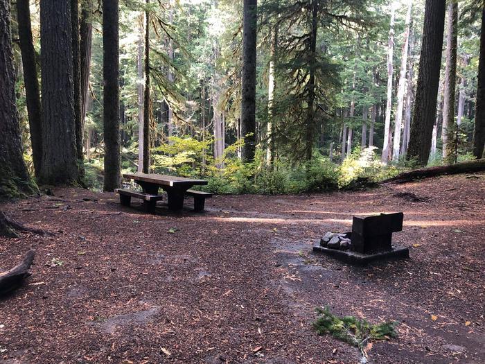 Ohanapecosh Campground - Site A020