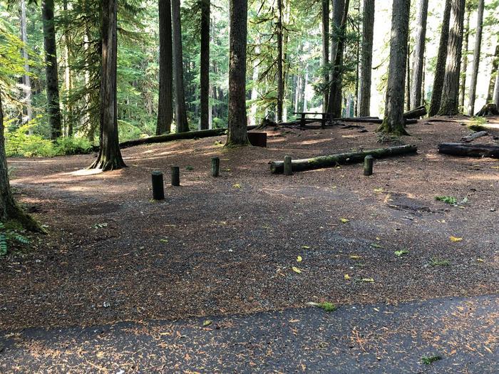 Ohanapecosh Campground - Site A020 Parking Area