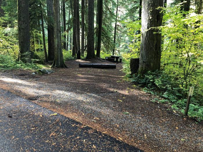 Ohanapecosh Campground - Site A021 Parking Area