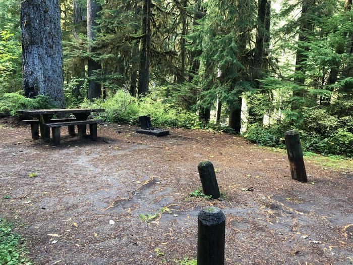 Ohanapecosh Campground - Site A022