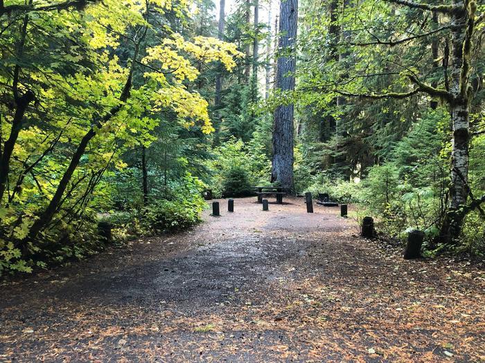 Ohanapecosh Campground - Site A022 Parking Area
