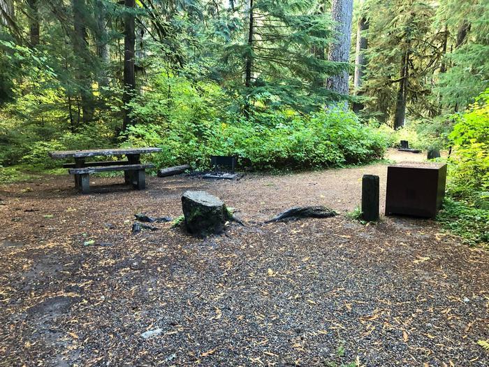 Ohanapecosh Campground - Site A023