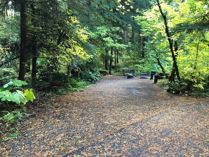 Ohanapecosh Campground - Site A023 Parking Area