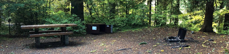 Ohanapecosh Campground - Site A024
