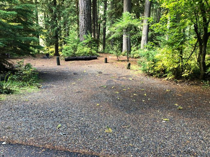 Ohanapecosh Campground - Site A024 Parking Area
