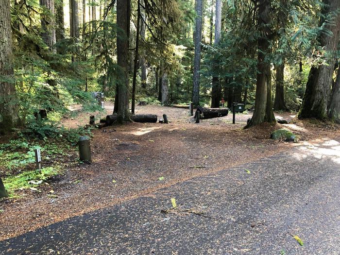 Ohanapecosh Campground - Site A025 Parking Area