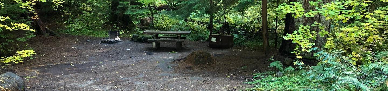 Ohanapecosh Campground - Site A027