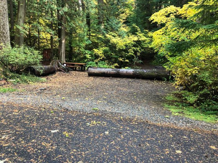 Ohanapecosh Campground - Site A027 Parking Area