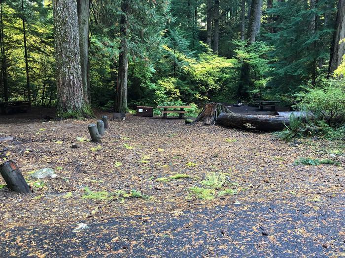 Ohanapecosh Campground - Site A028 Parking Area