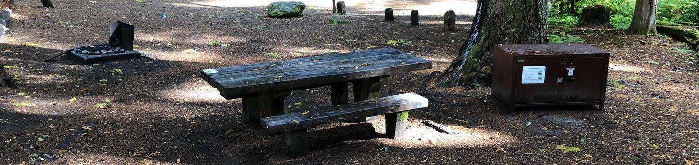 Ohanapecosh Campground - Site A011
