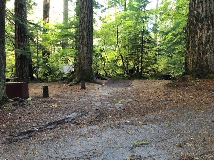 Ohanapecosh Campground - Site B010 Parking Area