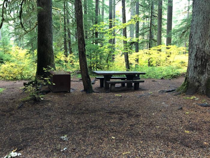 Ohanapecosh Campground - Site B005