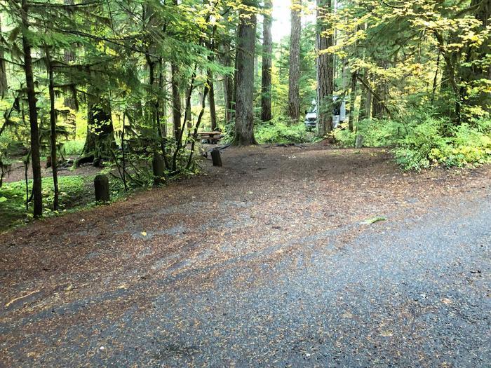 Ohanapecosh Campground - Site B005 Parking Area
