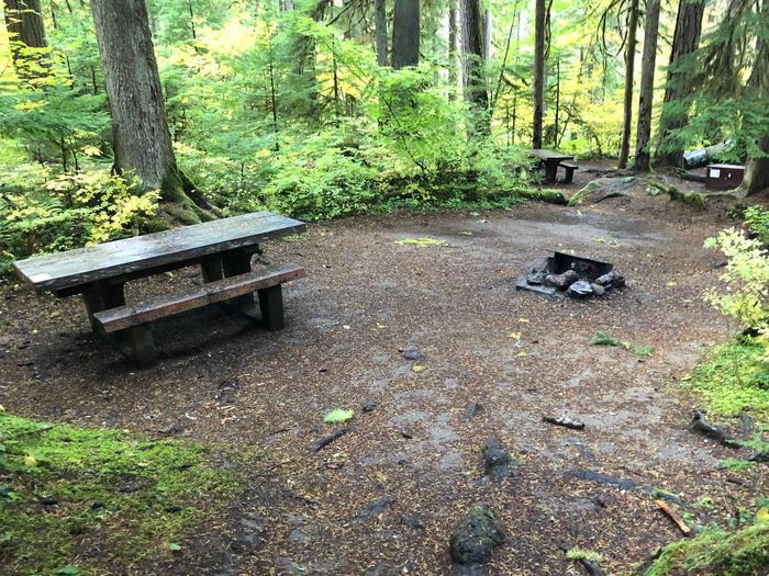 Ohanapecosh Campground - Site B008