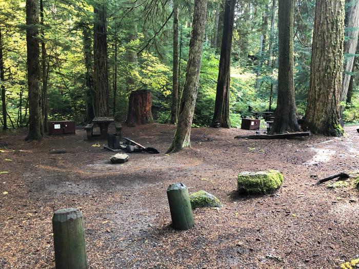 Ohanapecosh Campground - Site A029